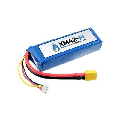 2200 mAh Battery
